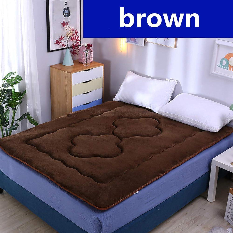 Sleeping Tatami Mat,Tatami Mattress,Foldable Mattress,Non-Slip Skin-Friendly Multi-Function Warm Bedroom Floor-e 100x200cm(39x79inch)