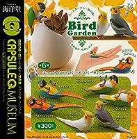 カプセルQミュージアム バードガーデン-鳥の庭-① 熱帯のコンパニオンバードたち全6種