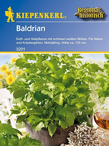 Kiepenkerl 3201 Baldrian (Baldriansamen)