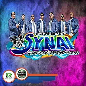 Grupo Synai