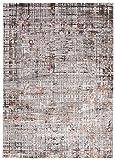 Mars AP72A - Alfombra moderna degradada y brillante para salón, dormitorio, salón, efecto carving, gris y marrón pardo (120 x 170 cm)