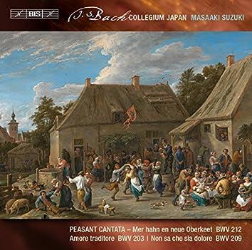 J.S. Bach: Secular Cantatas, Vol. 7