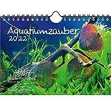 Aquariumzauber - Calendario de pared DIN A5 para 2022 animales en el acuario y bajo el agua