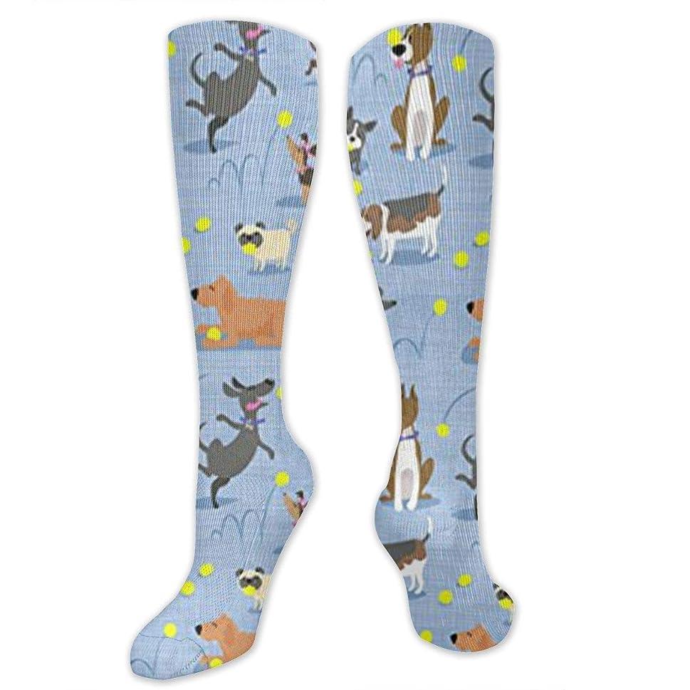 晴れジェム感謝靴下,ストッキング,野生のジョーカー,実際,秋の本質,冬必須,サマーウェア&RBXAA Tennis Dogs Love Ball Socks Women's Winter Cotton Long Tube Socks Cotton Solid & Patterned Dress Socks