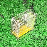GIAOYAO Ant Farm, Acrilico Trasparente Formicaio casa for i Bambini di Studio di Ant Comportamento Fattoria Didattica formicaio Formica (Colore: B) (Colore : B)