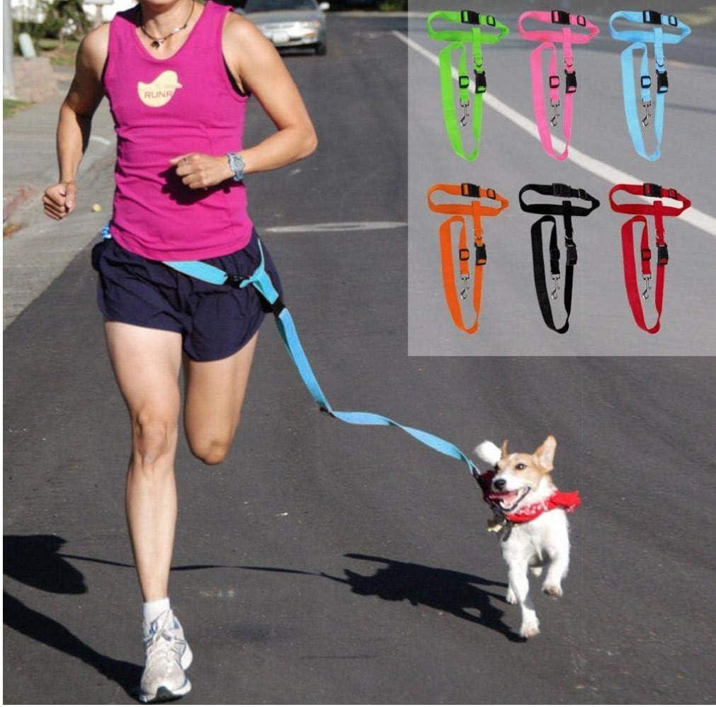 Aisoway Running Jogging Lead Leash wholesale Free Excellent Dog Adjustable Hands Pet