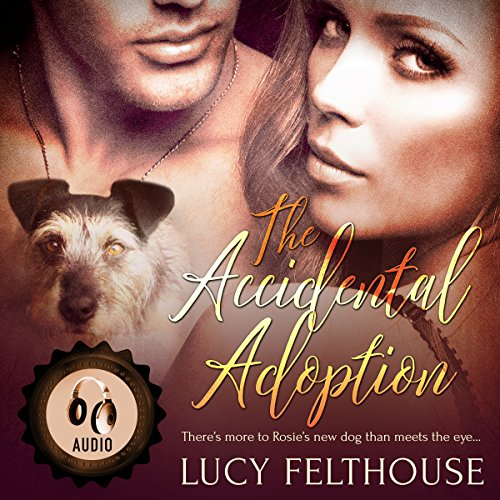 The Accidental Adoption cover art
