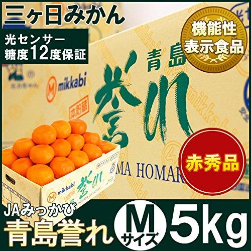 本貯蔵青島誉れみかん【赤秀】Mサイズ5キロ(45個前後)