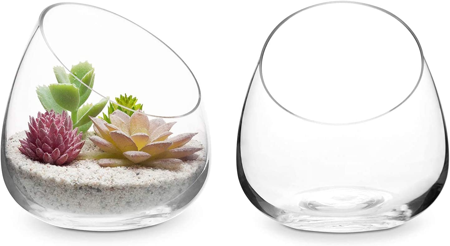 MyGift lowest price Mini 5-Inch Clear Glass Succulent Terrarium Air Plant Indianapolis Mall Ca