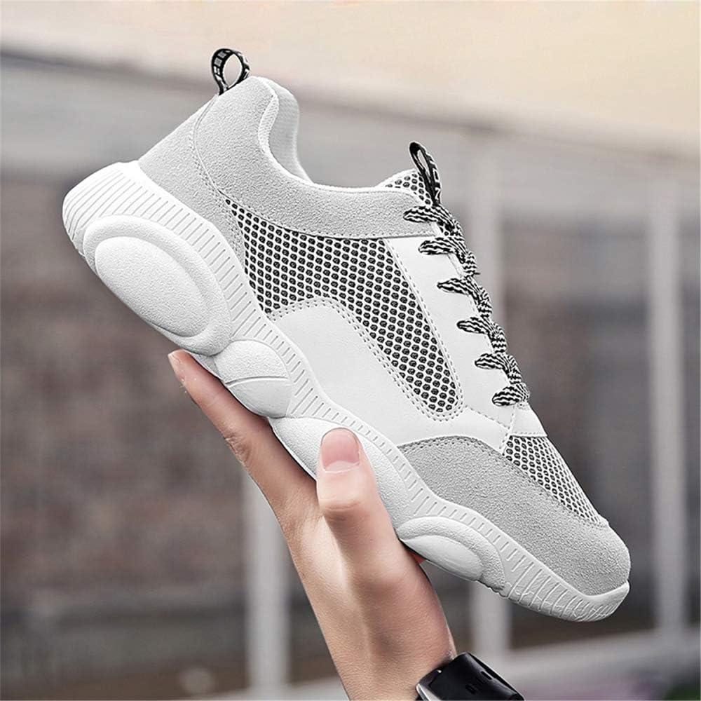 Dilnot Running Zapatos Aptitud Ligero Deportes Zapatos para Correr Zapatillas de Gimnasia