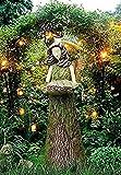 Die besten 1 Hummingbird Feeders - 1/2 PCS Sherwood Fern Fairy Statuen mit Vogelhäuschen Bewertungen