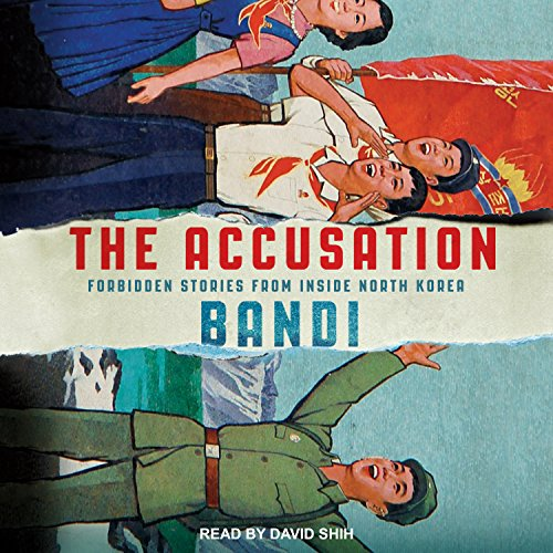 The Accusation audiobook cover art