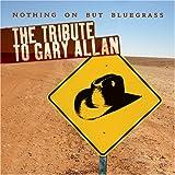 Gary Allan Cd
