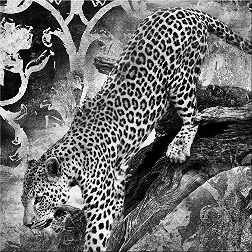 artissimo, Glasbild, 30x30cm, AG2034A, Leopard, schwarz-weiß, Bild aus Glas, Moderne Wanddekoration aus Glas, Wandbild Wohnzimmer modern