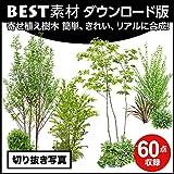 【BEST素材】切り抜き写真_寄せ植え樹木 簡単、きれい、リアルに合成! (Win)|ダウンロード版