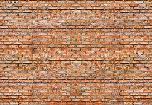 Papermoon Bak Steinmauer Vlies Fototapete 350x260cm.