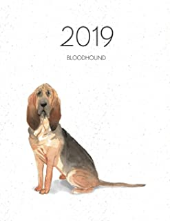 2019 Bloodhound: Dated Weekly Planner With To Do Notes & Dog Quotes - Bloodhound (Awesome Calendar Planners for Dog Owners)