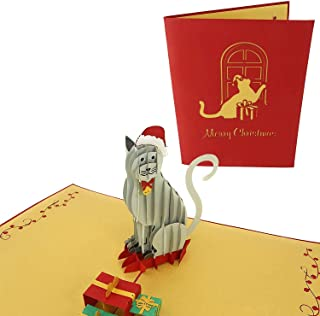 PopLife Holiday Cat Pop Up Christmas Card, Handmade 3D Greeting, Blank Merry Christmas Note, Small Stocking Present for Fr...