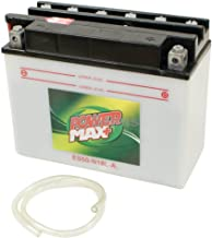 Stens 425-449 Battery, Replaces MTD: 725-1438, 725-1635, 753-0608, Battery Acid not Included, 275 cranking amp, 8-1/2