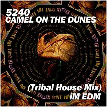 Camel on the Dunes (Tribal House Mix)