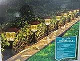 HGTV Solar LED Pathway Lights - 8 Pack