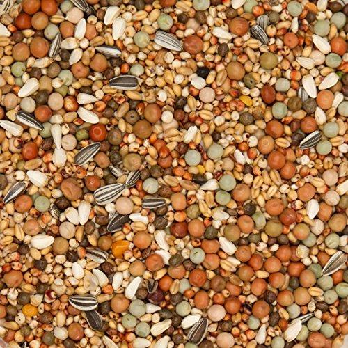 25kg Beyers Nr 48 - Olympia Zucht - und Jungtauben ohne Mais