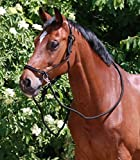 Waldhausen Knotenhalfter mit Zgel, schwarz, Pony, schwarz, Pony