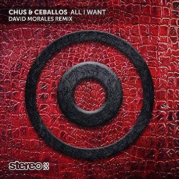 All I Want (David Morales Remix)