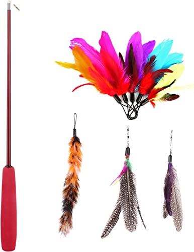 Abestbox Retractable Cat Toys, Cat Teaser Wand with 8 Assorted Interactive Refills Feathers Teaser, Cat Feather Toys ...