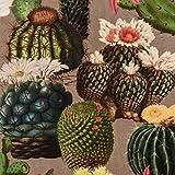 Samtstoff Dekostoff Italian Velvet Samt Kaktus grau grün