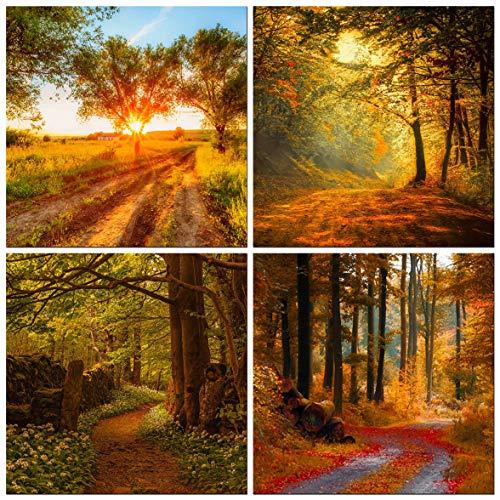 CUFUN Art - Waldweg in der Sonne Kunst Arbeit Fotodrucke auf Leinwand gestreckt und gerahmt fertig zum Aufhängen (30 x 30 x 4 x)