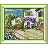 YMSWTF El Hermoso Patio contado Stitch Cross Stitch 11CT 14CT Set Costch Setitch Kit de Punto de Cruzado Costura de Bordado (Cross Stitch Fabric CT Number : 11CT Picture Printed)