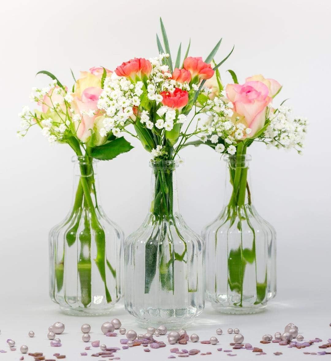 casavetro - Jarrones pequeños de Cristal HALSI, Botellas de Cristal, Estilo rústico, Vintage, jarrón de Cristal, Transparente, Mini Botellas ...