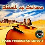 SAHARA SPIRIT - UNIQUE original Multi-Layer Studio WAV Samples Library on DVD