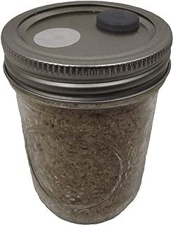 Best mushroom jars growing Reviews