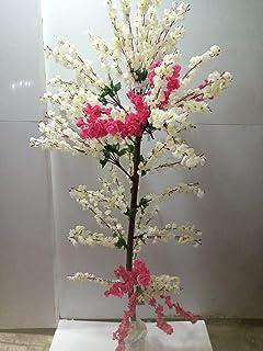 شجرة المشمش ابيض مع فوشيا