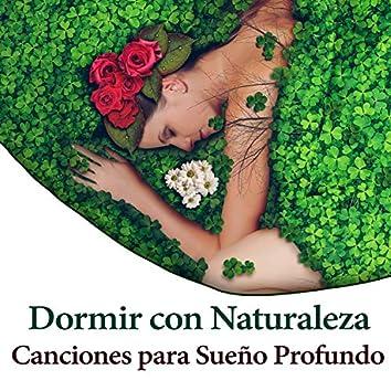Dormir con Naturaleza: Canciones para Sueño Profundo, Música para Relajacion, Descansar, Paz Interior y Armonía