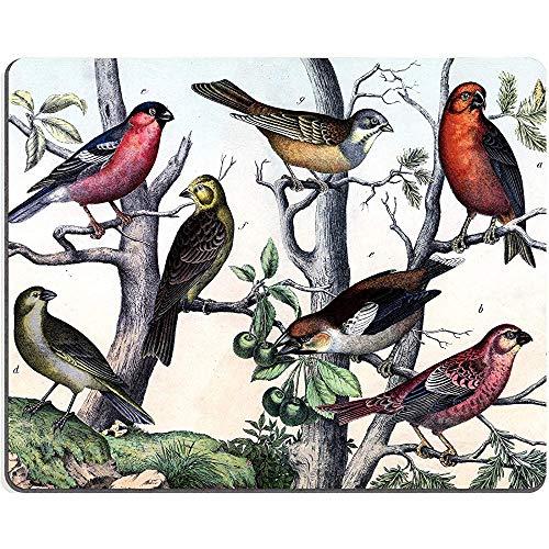 Muiskussen, traditionele Chinese vogels en bomen schilderijen, aangepaste rechthoek Mousepad 9.45 X 7.87 Inch (240Mmx200Mmx3Mm)