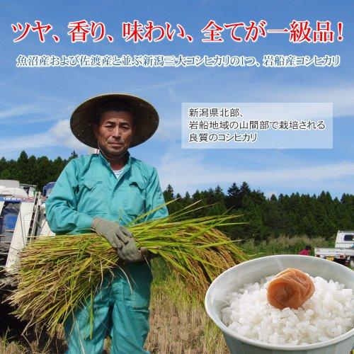 【法事のお返し・香典返し】減農薬米コシヒカリ 2kg 玄米・贈答箱入り/ギフトに新潟の美味しい有機米
