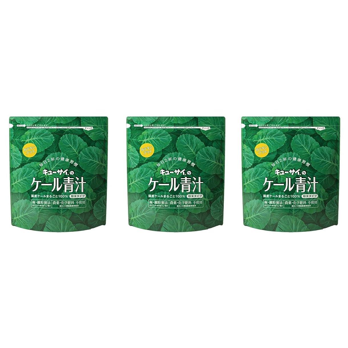 戸惑う体現するシュリンクキューサイ ケール青汁(粉末タイプ)カテキンプラス 420g 3袋