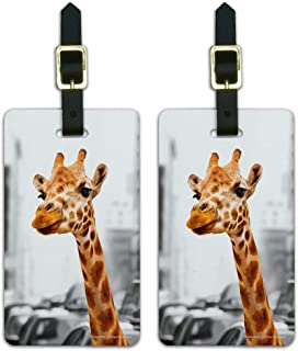 Giraffe in Taxi Luggage ID Tags Suitcase Carry-On Cards - Set of 2