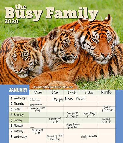 """Busy Family Wall Calendar 2020 Monthly January-December 14'' x 12"""""""