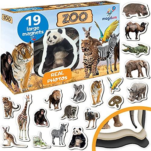 Magdum Win Foto Zoo Animales Imanes de Nevera Infantil para niños - Imanes Pizarra Grandes - Juguetes Educativos bebé 3 años - Set de imán para bebé - Imanes Pizarra magnética para Aprender