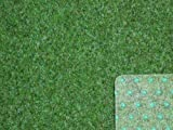 Ta-Bo Lifestyle Premium Kunstrasen Rasenteppich grün 10 mm mit Noppen 200 cm breit, 350x200 cm