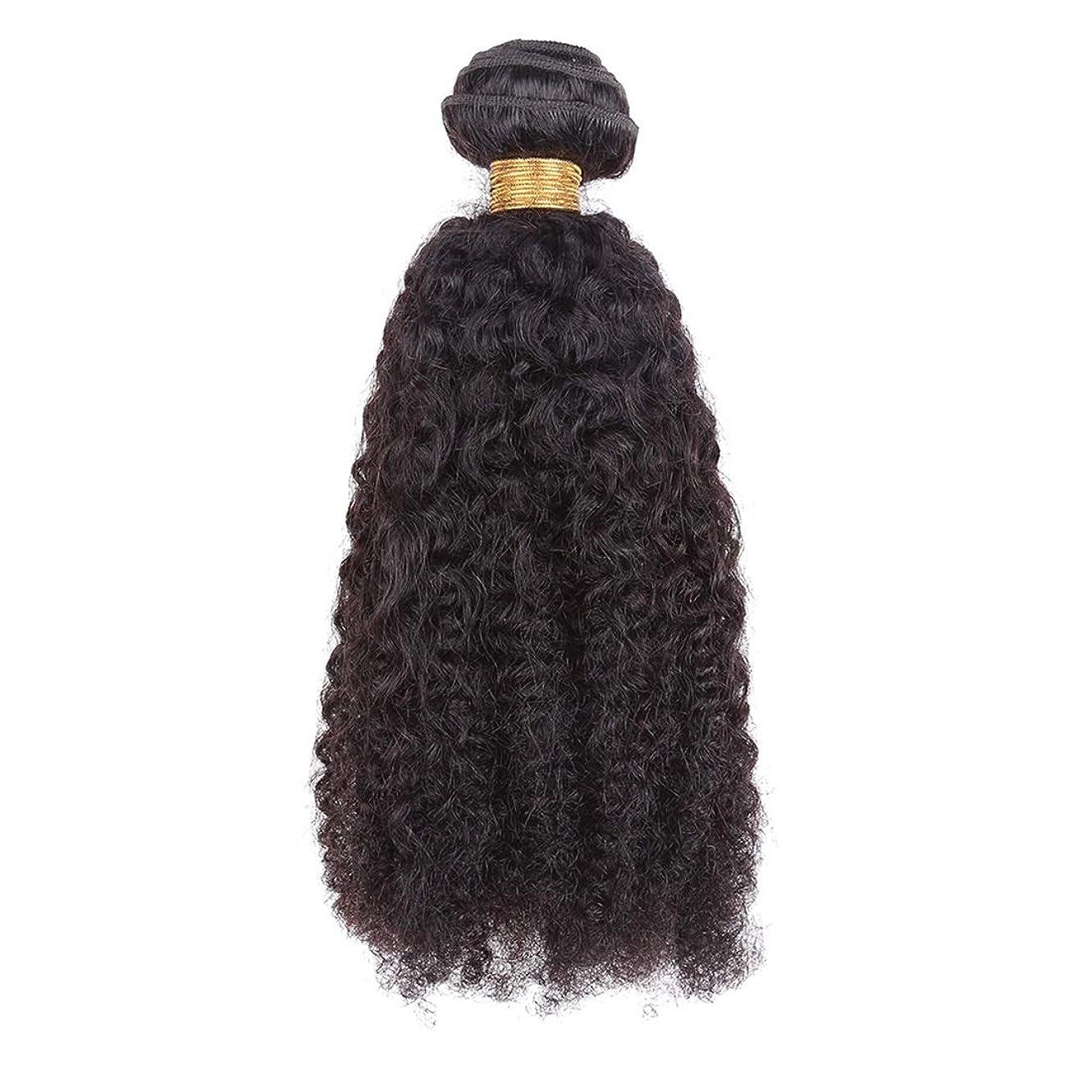 むしゃむしゃ失敗くそーJIANFU ヨーロッパとアメリカの女性18インチナチュラルブラックヘアカーテンリアルヘアアフロカールヘアカーテン (Color : ブラック)