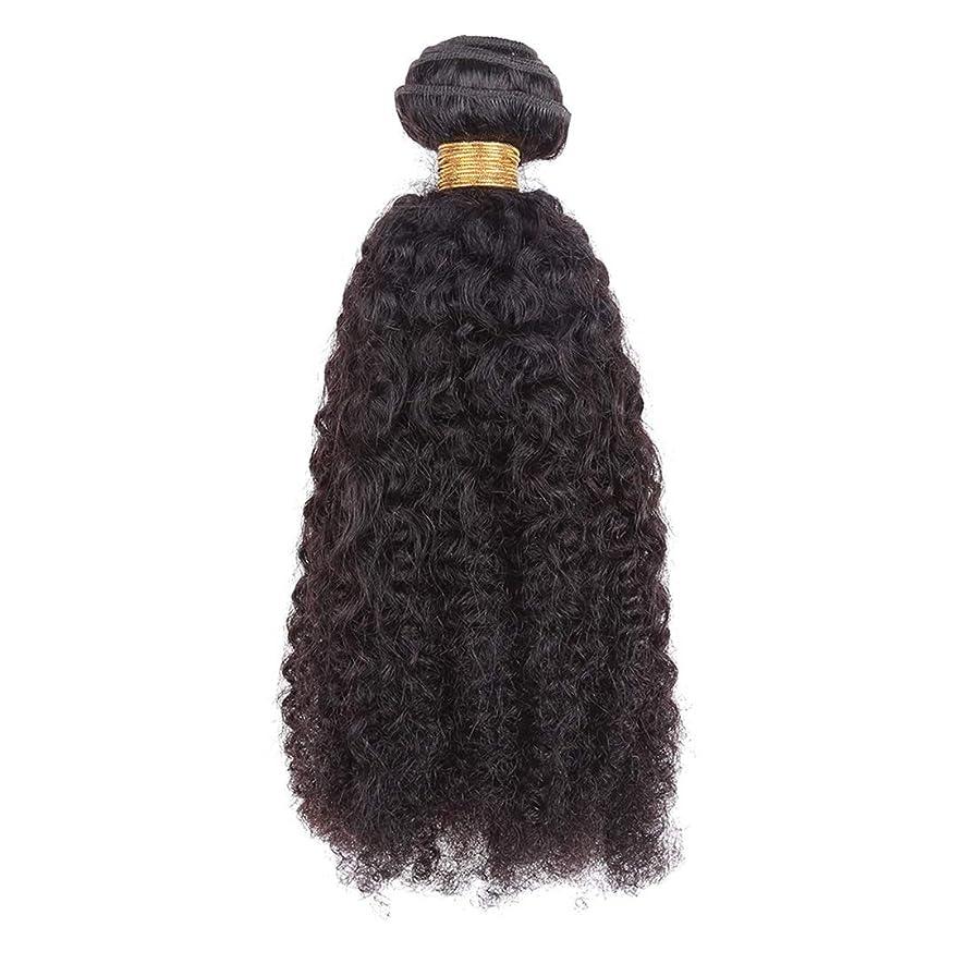 雨忌避剤拍手するKoloeplf ヨーロッパとアメリカの女性18インチナチュラルブラックヘアカーテンリアルヘアアフロカールヘアカーテン (Color : ブラック)