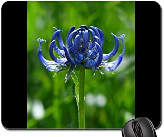 Mouse Pads - Spherical Devils Claw Flower Blossom Bloom Blue