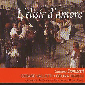 L'elisir d'amore (Gaetano Donizetti)