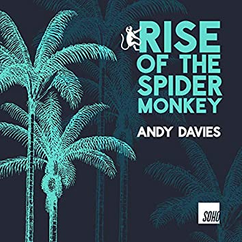 Rise of the Spider Monkey