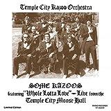 Best Kazoos - Some Kazoos (7 Burgundy Vinyl) Review
